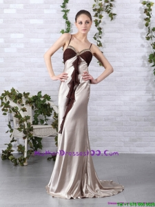 Multi Color Long Mother of Bride Dresses with Backless and Brush Train