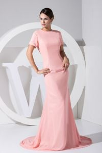 Brush Train Light Pink Dresses for Bride Mother with Cool Back