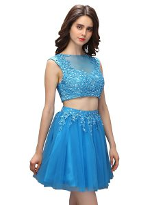 Fashionable Sleeveless Mini Length Beading and Appliques Zipper Mother of Groom Dress with Baby Blue