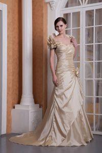 Champagne A-line Sweetheart Mother of the Bride Dresses Satin Court Train