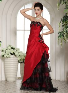 Two-toned Sleeveless Mother of the Groom Dresses with Appliques
