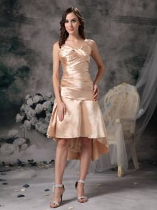Plus Size High-low Ruched Champagne Mother of Bride Dress