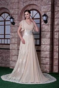 Lace Accent Brush Train V-neck Appliqued Mother Bride Dresses