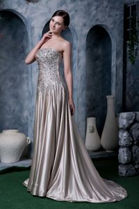Pleated Brush Train Strapless Rhinestoned Dress for Bride Mother